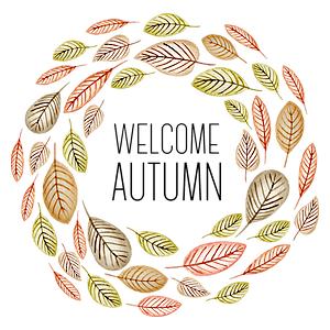 Gallery grafiche per felpe personalizzate autunno